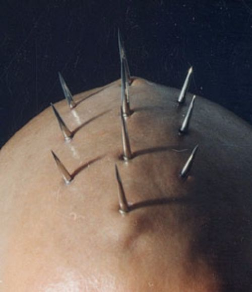 Spikes implanted on the head