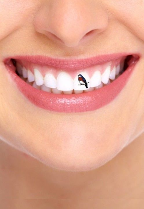 bird tattoo on teeth
