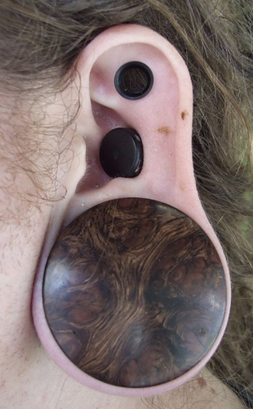 gauge-and-scalpelled-piercing