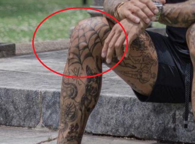 Tim spider web tattoo