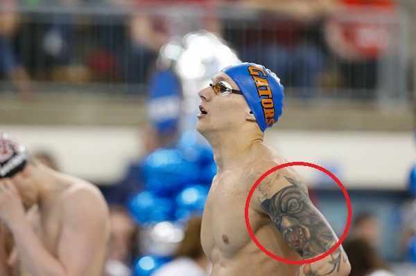 Caeleb Dressel Bear tattoo