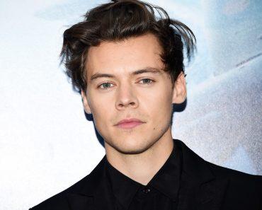 Harry Styles-