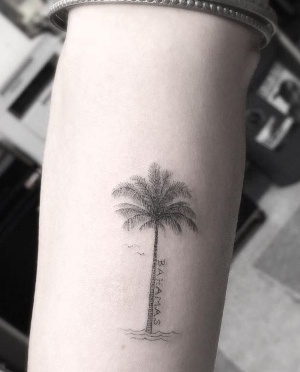 Zoe kravitz palm tree tattoo