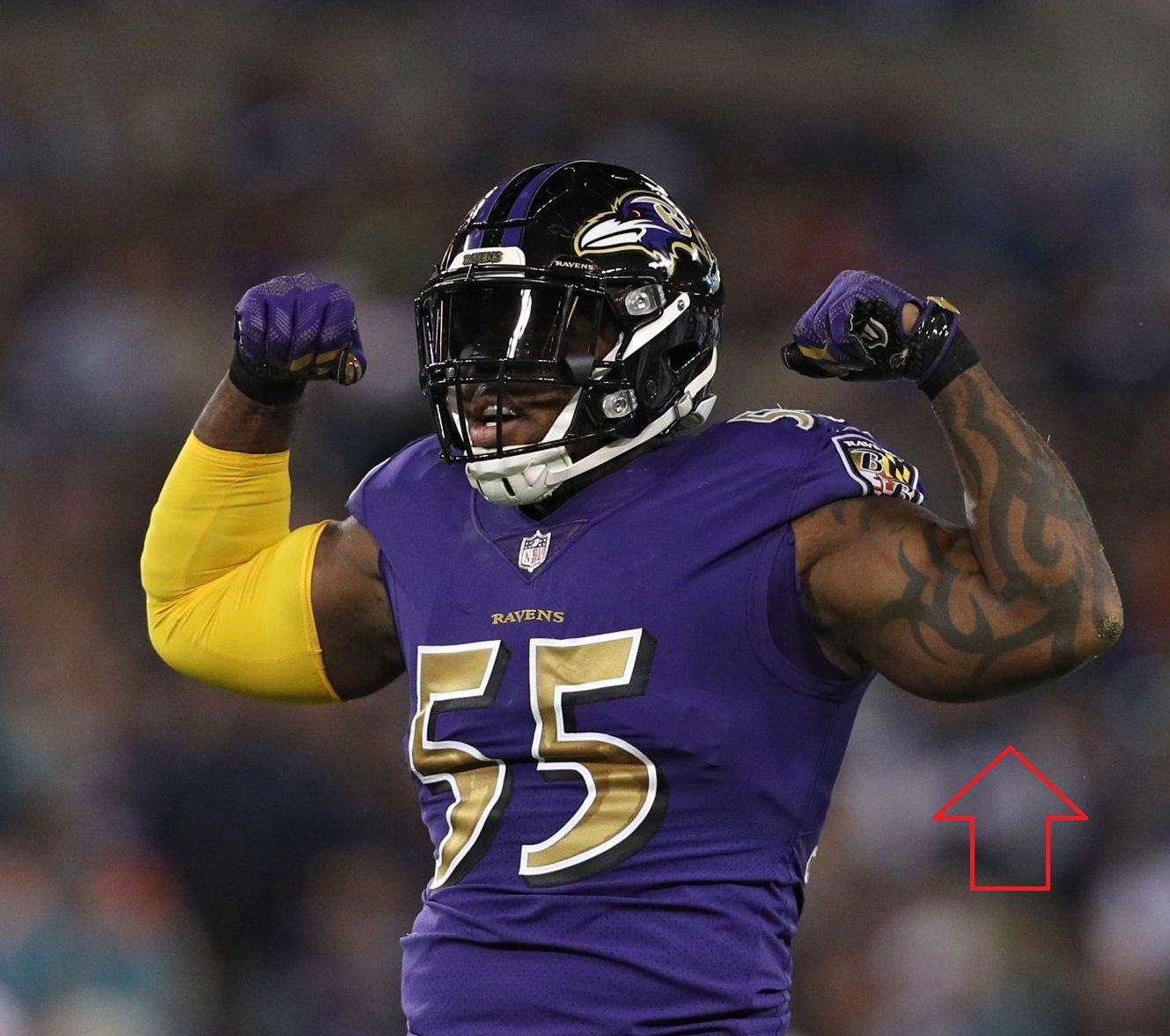 Terrell Suggs Left Arm Tribal Tattoo