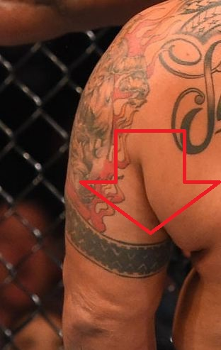 Mark Hunt Left Arm Band Tattoo