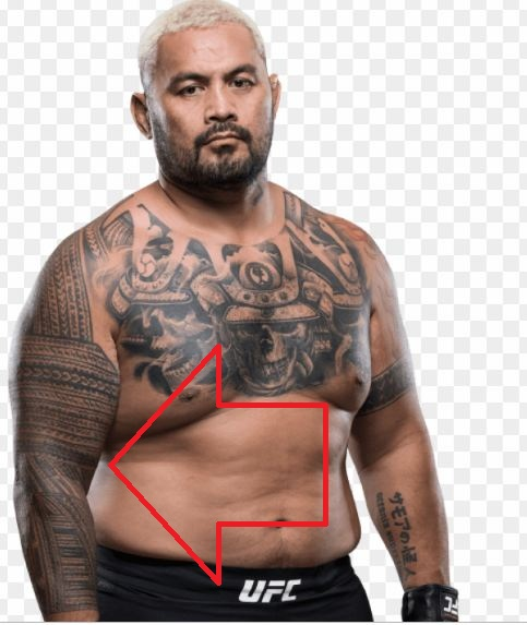 Mark Hunt Right Arm Design