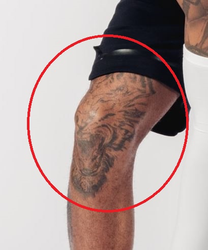 D Angelo Roaring Tiger Tattoo