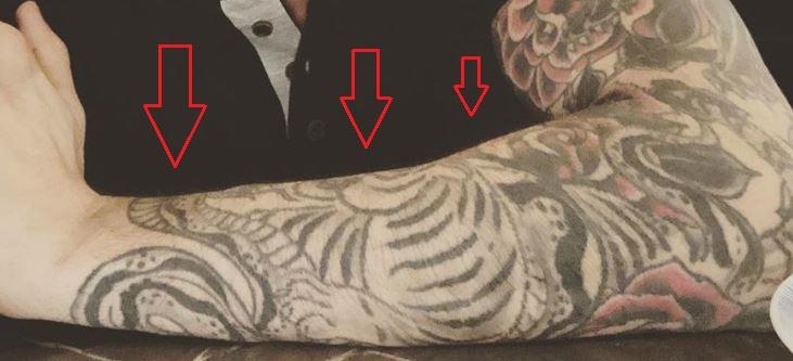 Daniel Weber tiger snake tattoo 1