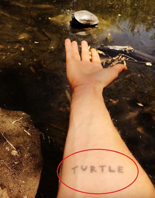 Ellen Page turtle tattoo