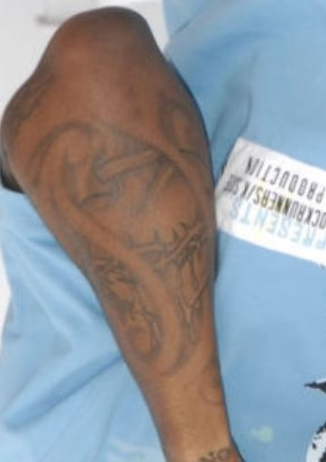 Lloyd Left Arm Design