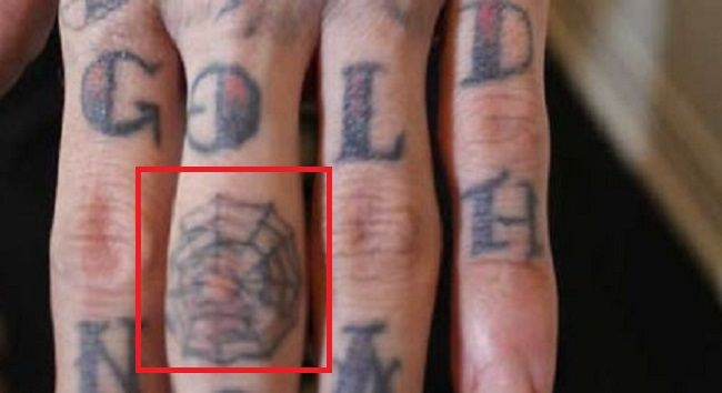 Trace Cyrus-Tiny Spider Web Tattoo