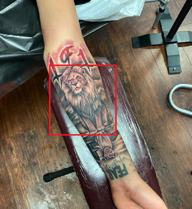 LaMelo Ball-Lion-Tattoo