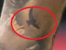 Marcelo flying bird ink