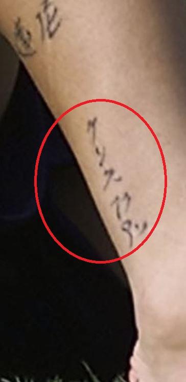 Fabio leg ink-