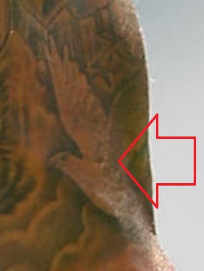 Lance flying Dove Tattoo