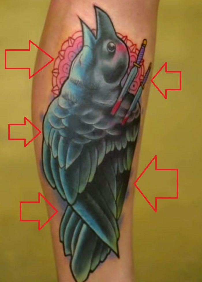 Megan Massacre-Raven-Tattoo