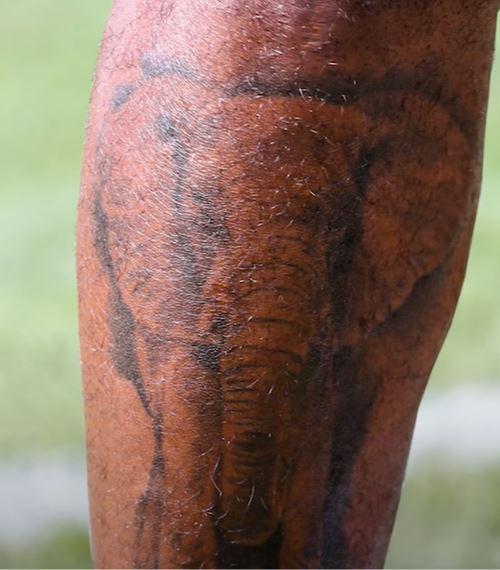 Von elephant tattoo
