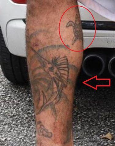 Mike Holston turtle swordfish tattoo