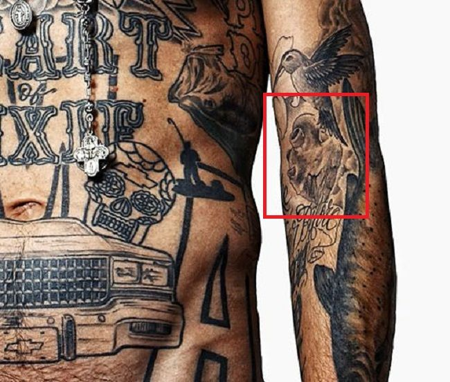 left forearm of yelawolf