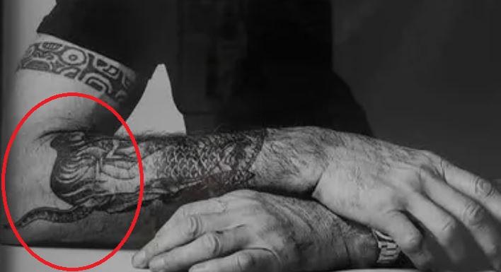 Anthony tiger tattoo