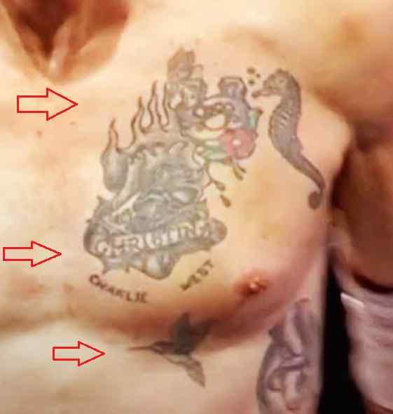 David Arquette christina bird tattoo