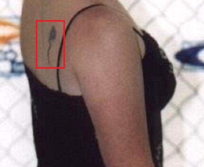 Holly Marie Combs-Rose-Tattoo