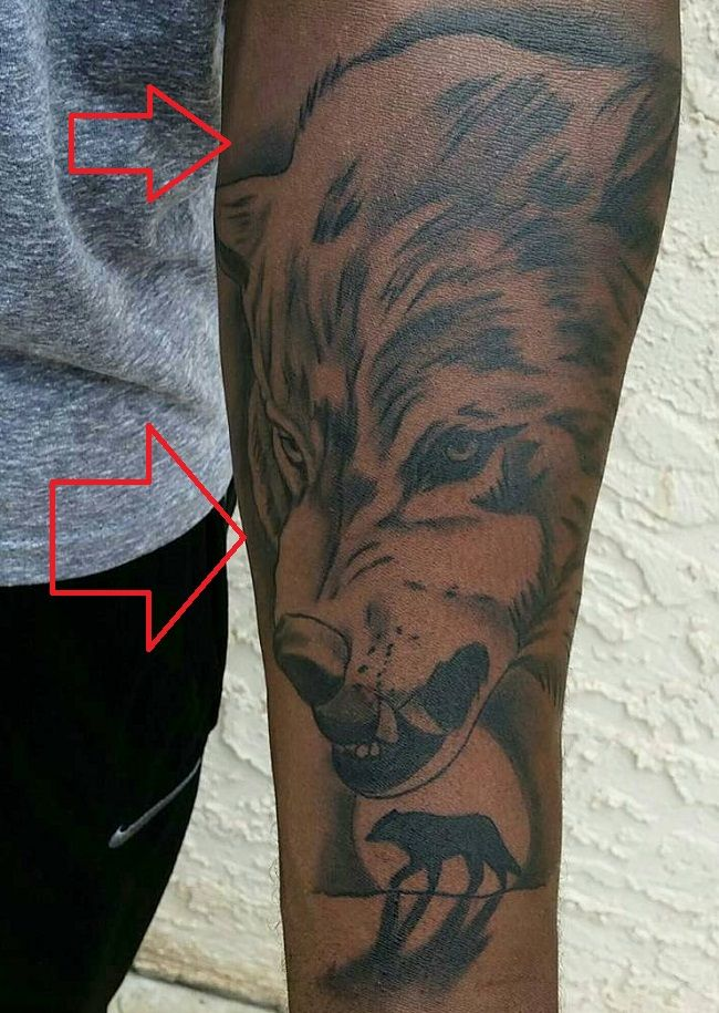 left arm tattoo of bryce margera