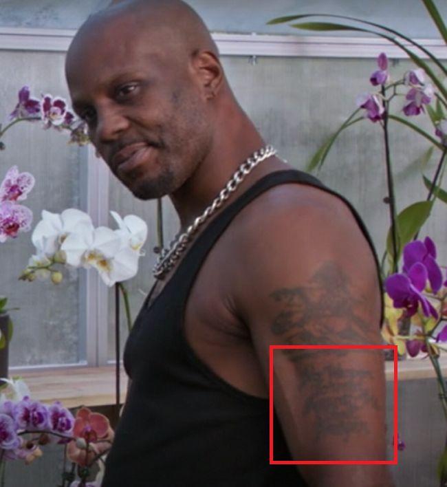 left arm of DMX