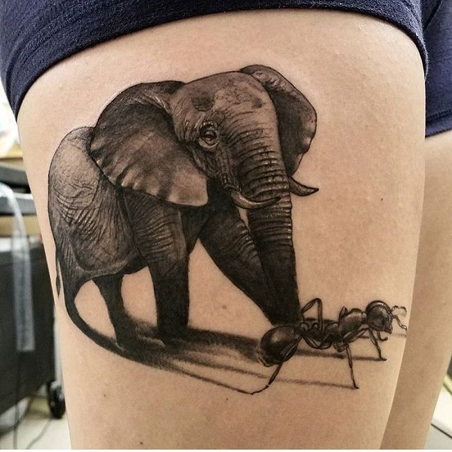 Ant with an Elephant Tattoo