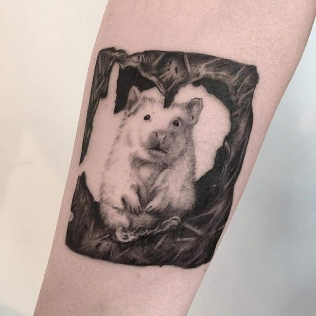 Hamster inside a frame Tattoo