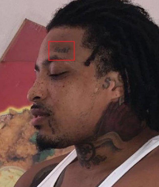 KTS Dre-Eyebrow