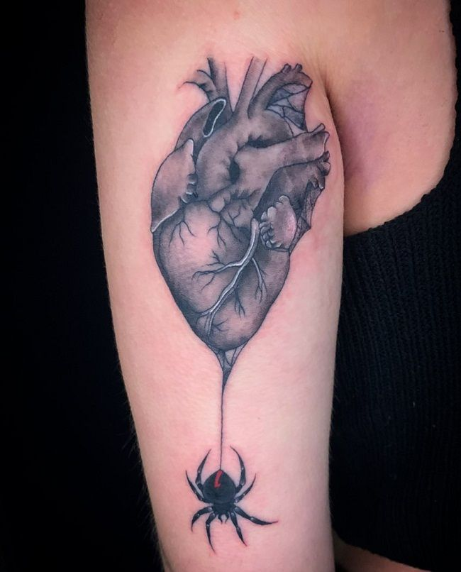 'Spider with Anatomical Heart' Tattoo