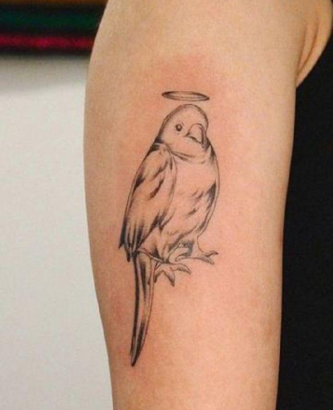 Angel Parrot Tattoo