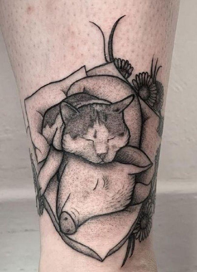 'Cat sleeping over a Pig' Tattoo