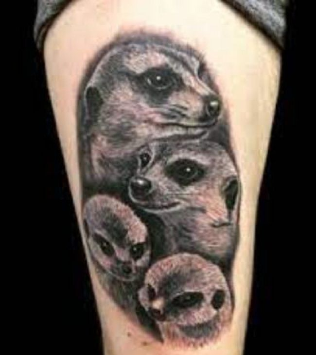 'Family of Mongoose' Tattoo