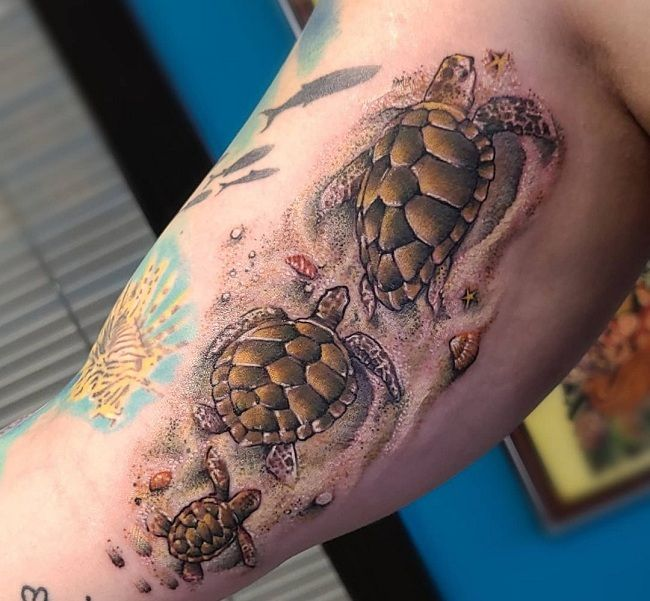 'Family of Turtle' Tattoo