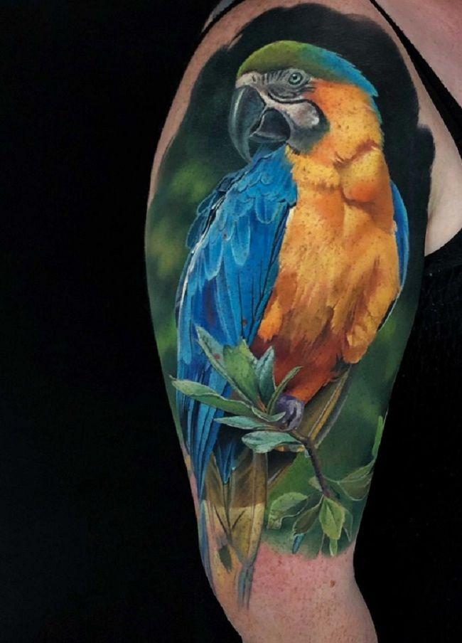 Naturalistic Parrot Tattoo