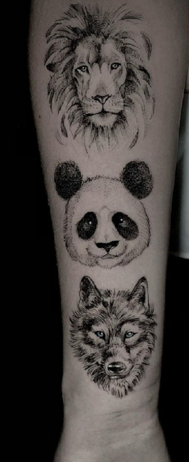 'Panda with a Lion and a Wolf' Tattoo