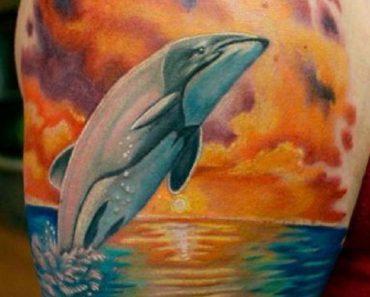 Realistic Dolphin Tattoo