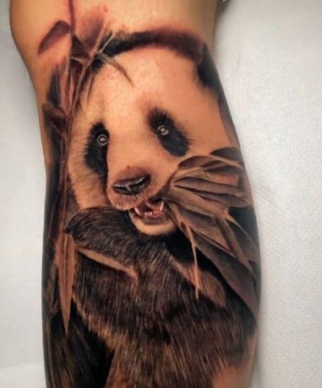 Realistic Panda Tattoo