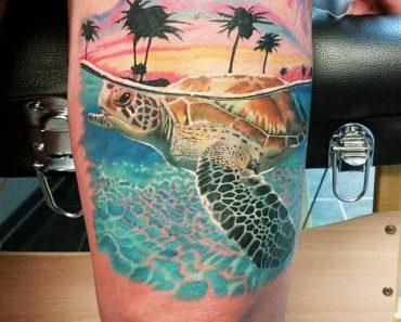 Realistic Turtle Tattoo