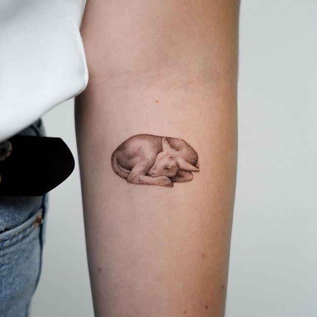 Sleeping Sheep Tattoo