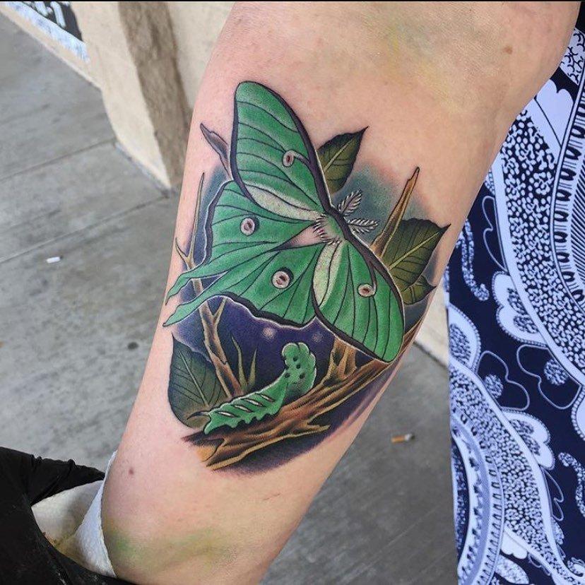 8 Caterpillar and Luna Moth Tattoo Night Scene
