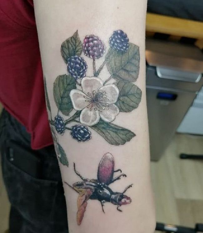 'Beetle with Blackberry Plant' Tattoo