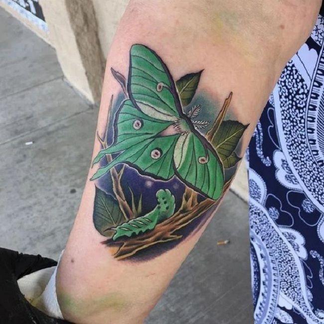 'Caterpillar with Luna Moth' Tattoo