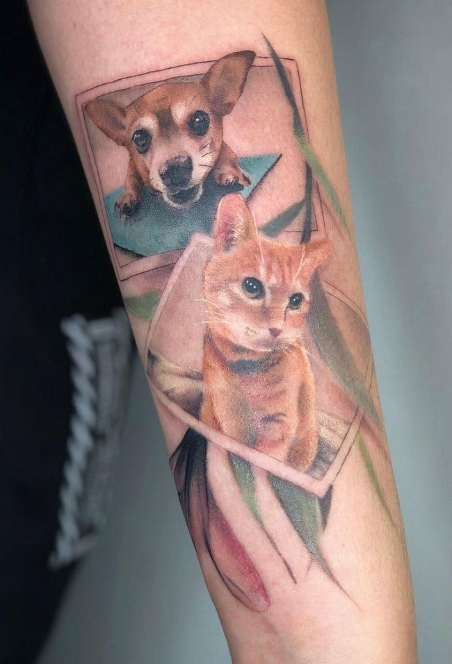 Chihuahua-Cat Tattoo