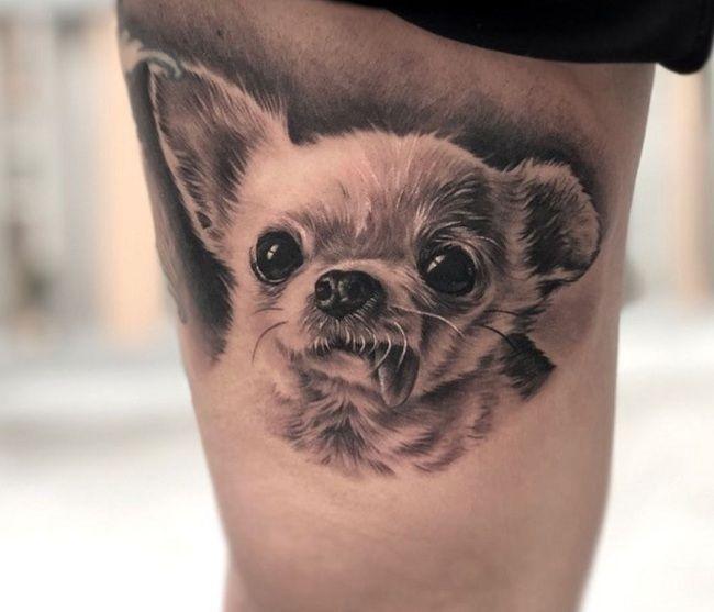 'Gray and Black Chihuahua' Tattoo