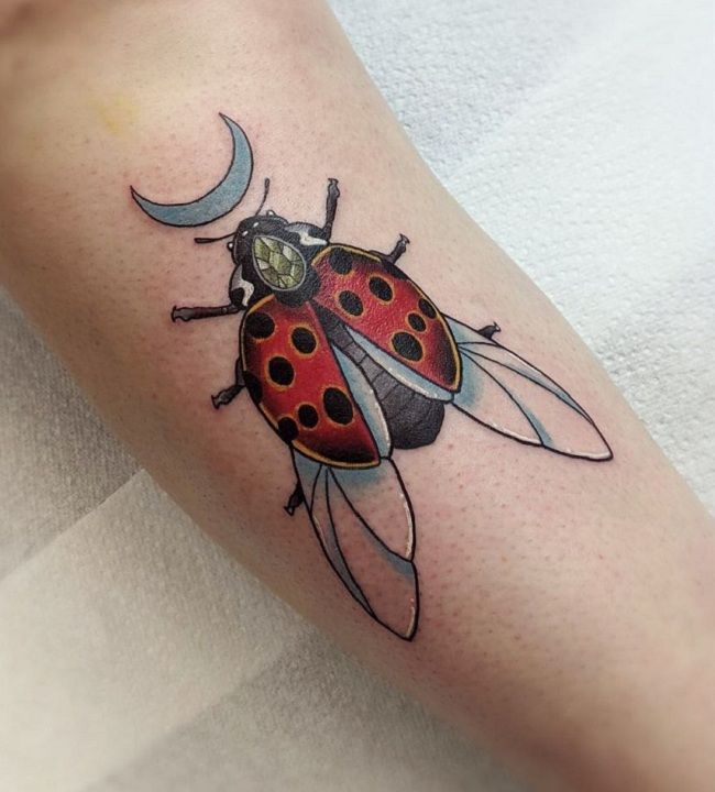 'Ladybird with a Crescent Moon' Tattoo