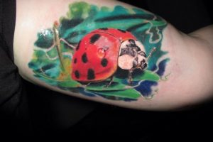 Naturalistic Ladybird Tattoo