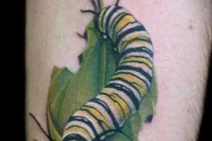 Realistic Caterpillar Tattoo